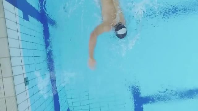 Swimmer In Pool: Stock Video
