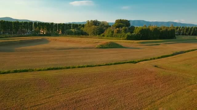 Golden Tuscan Countryside: Stock Video