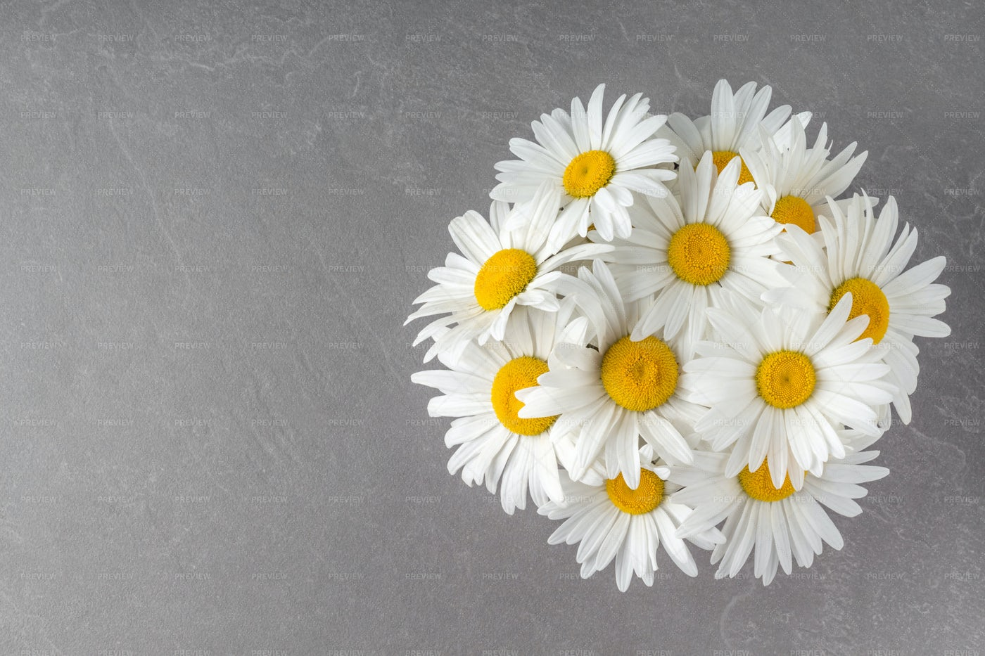 Bouquet Of Pretty Camomiles: Stock Photos