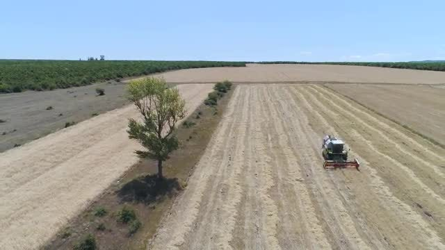 Aerial Shot Of Combine Harvester: Stock Video