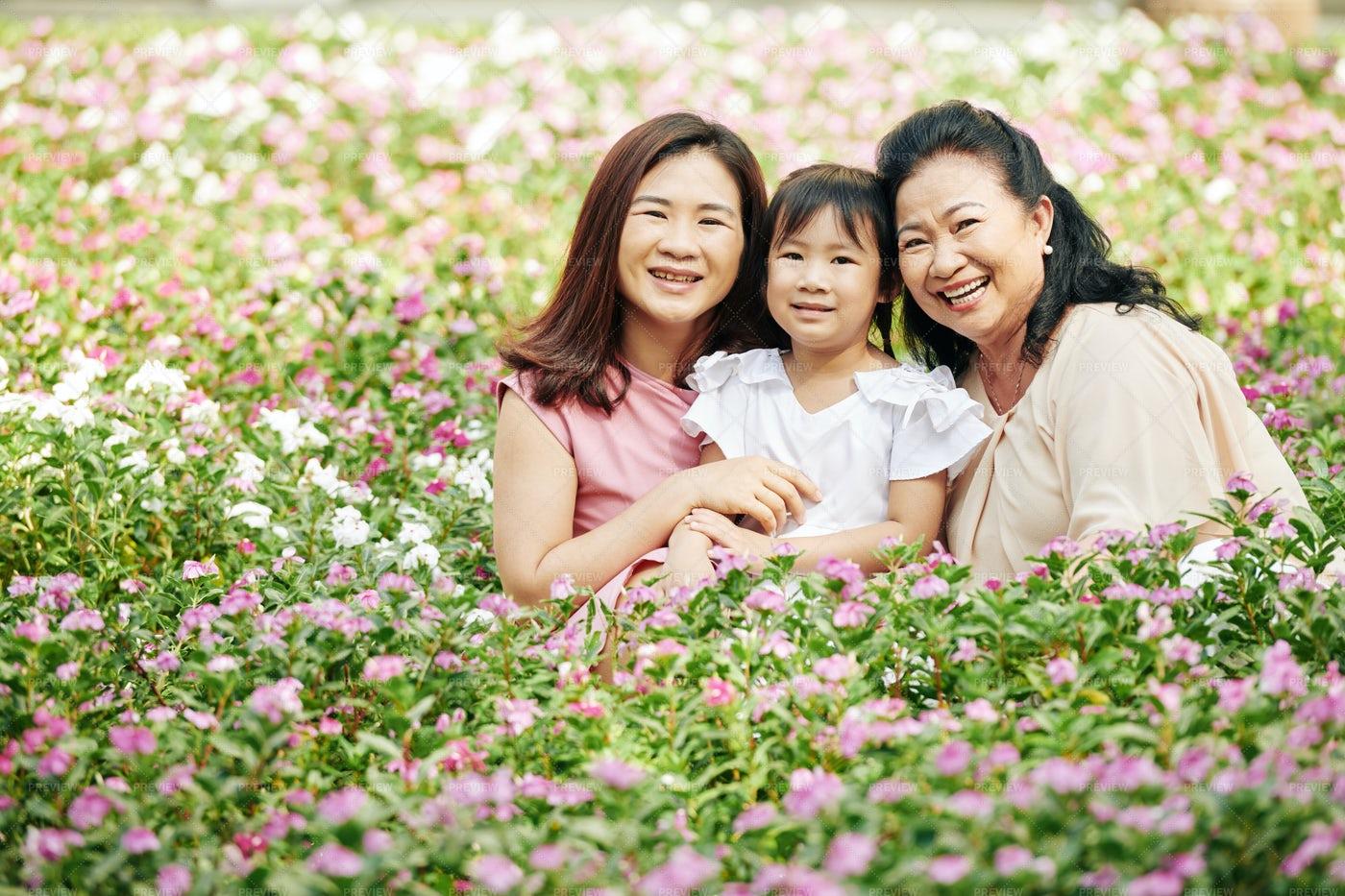Multi-generation Family: Stock Photos