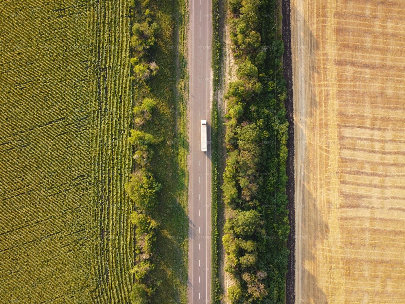 Rural Road: Stock Photos