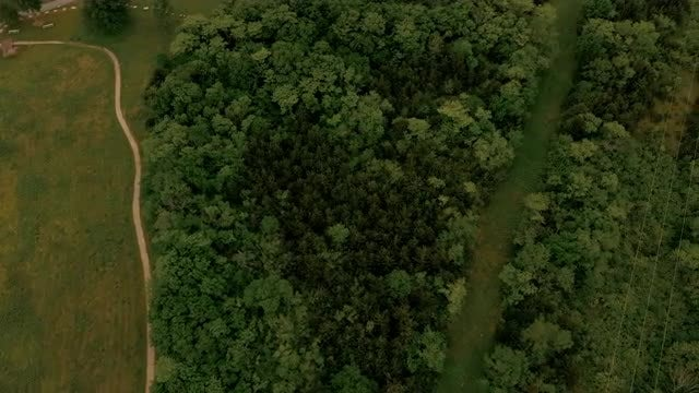 Aerial View Prairie And Trees: Stock Video