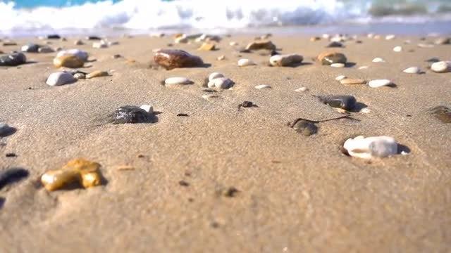 Stones On The Beach: Stock Video