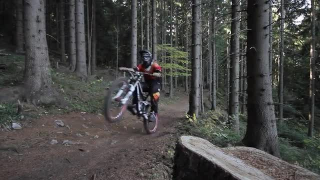 Mountain Biker Wheelie : Stock Video