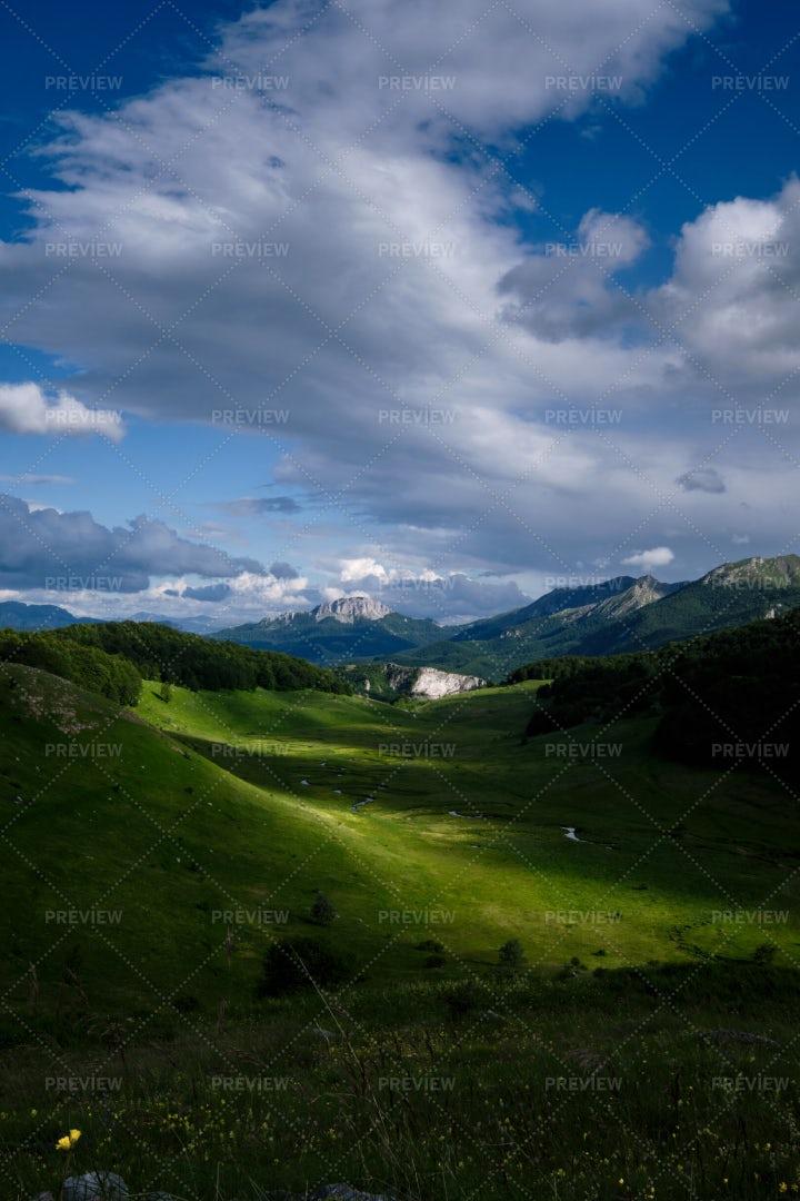 Mountain Stream: Stock Photos