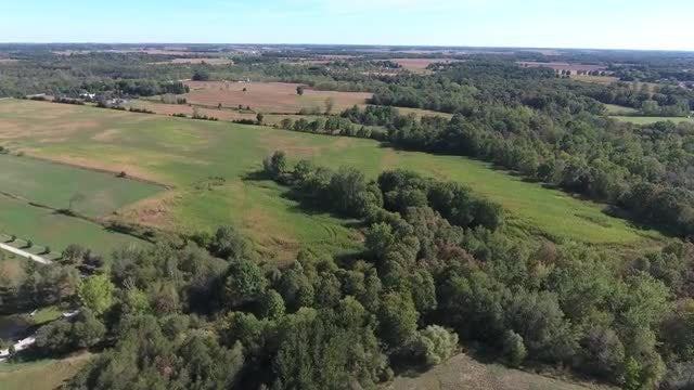 Forest & Farmland Aerial: Stock Video
