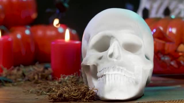 White Skull: Stock Video
