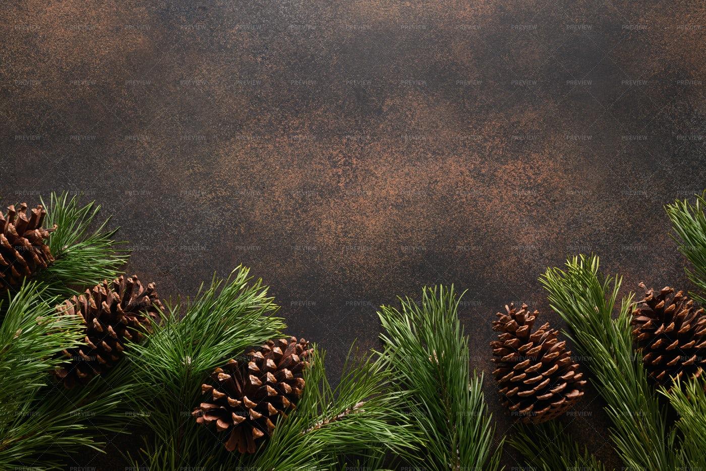 Christmas Border With Evergreen Branches: Stock Photos
