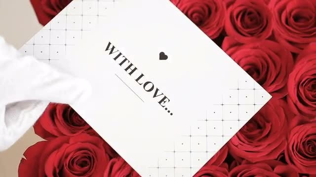 Box Of Red Roses With Gift Card: Stock Video