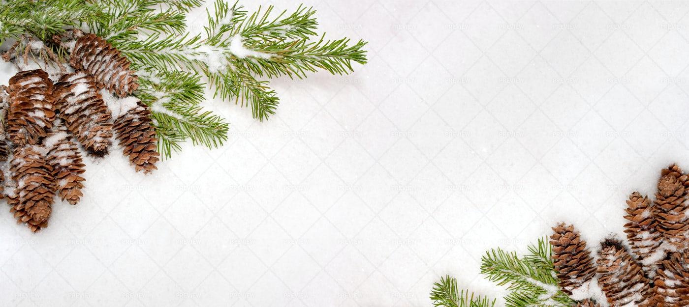 Christmas Natural Snowy Banner: Stock Photos