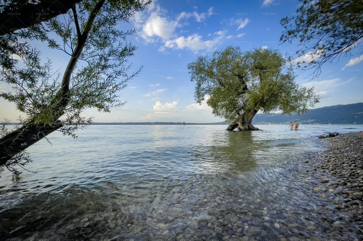 Lake Constance: Stock Photos