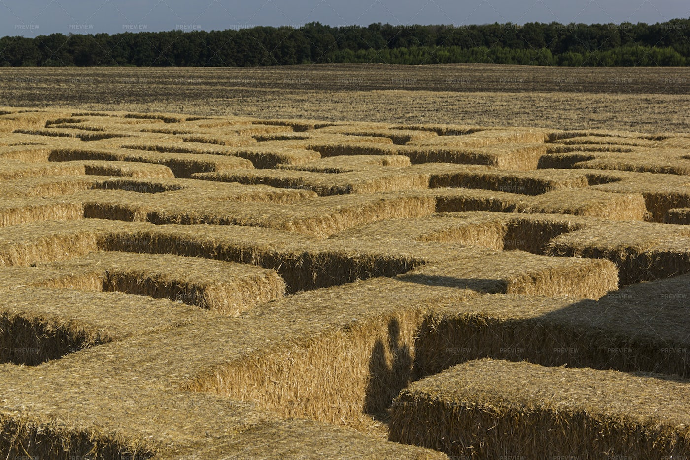 Labyrinth   Made From Dry Straw Bales: Stock Photos