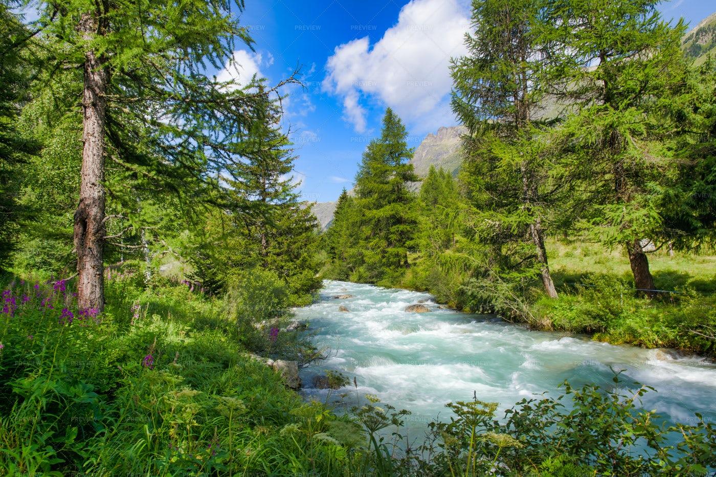 Alpine River: Stock Photos