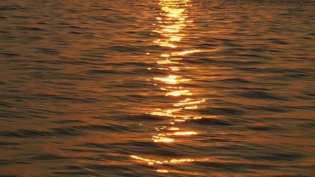 Sunset Reflected On Golden Sea : Stock Video