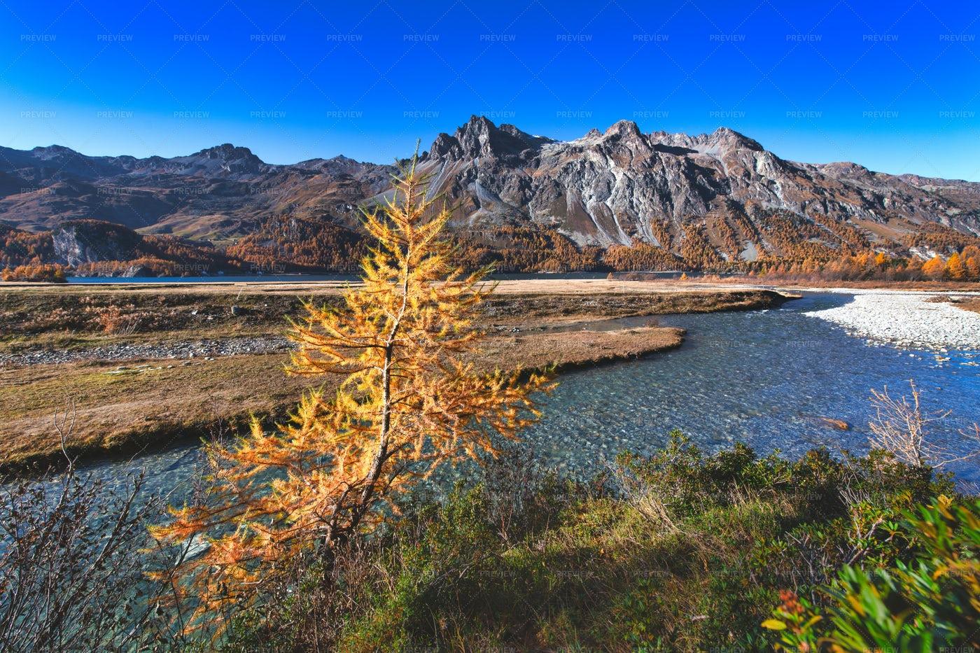 Engadine Autumn Landscap: Stock Photos