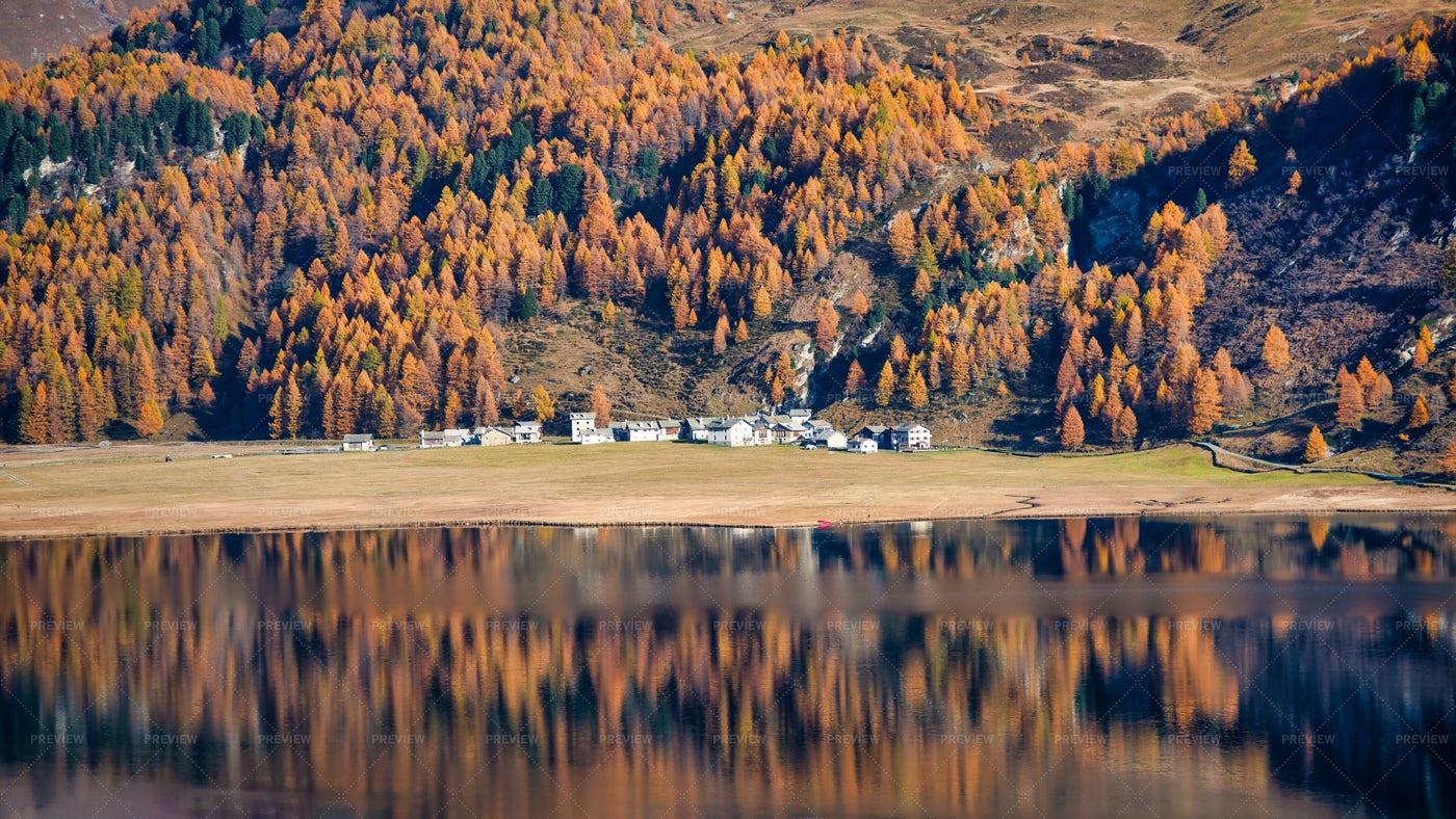 A Mirror Of Autumn Trees: Stock Photos