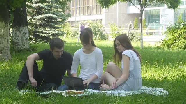 College Students Studying In Park: Stock Video