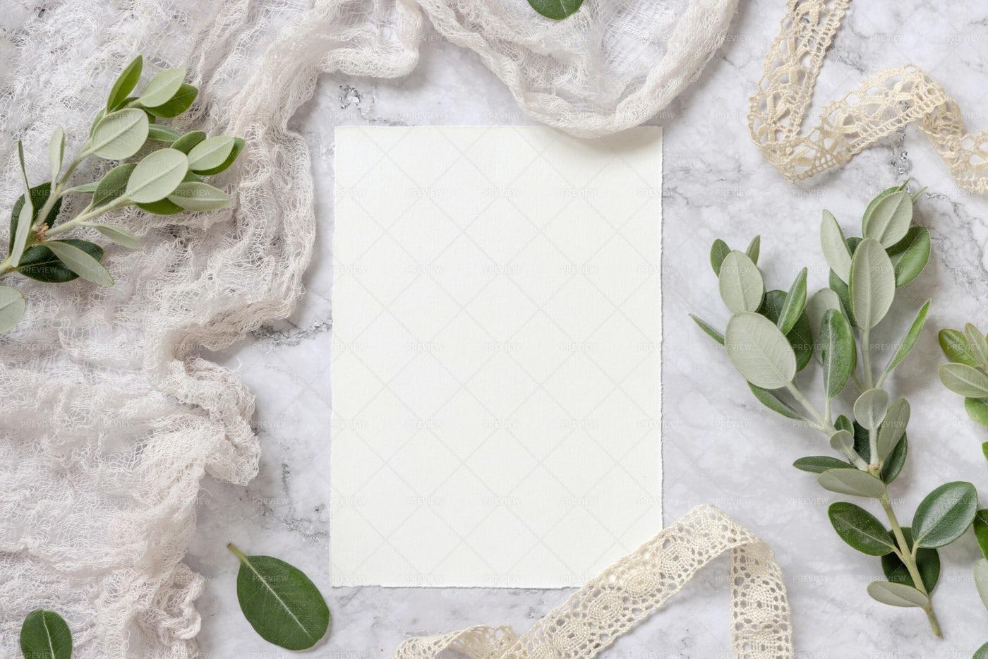Blank Card And Eucalyptus Branches: Stock Photos