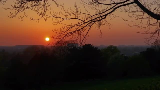Beautiful Wintry Sunset: Stock Video