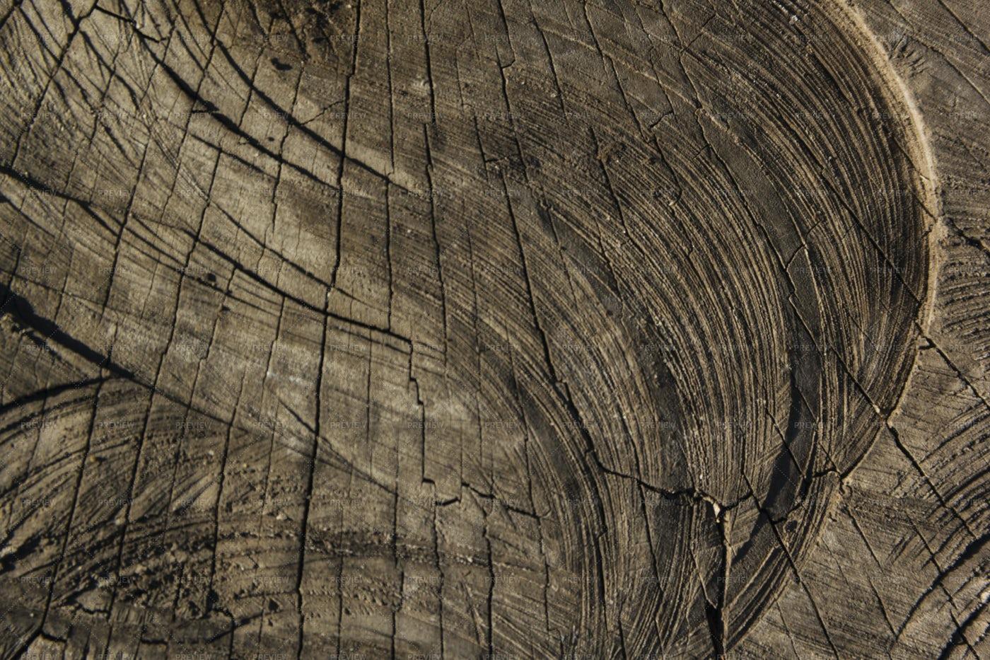Wood Texture: Stock Photos