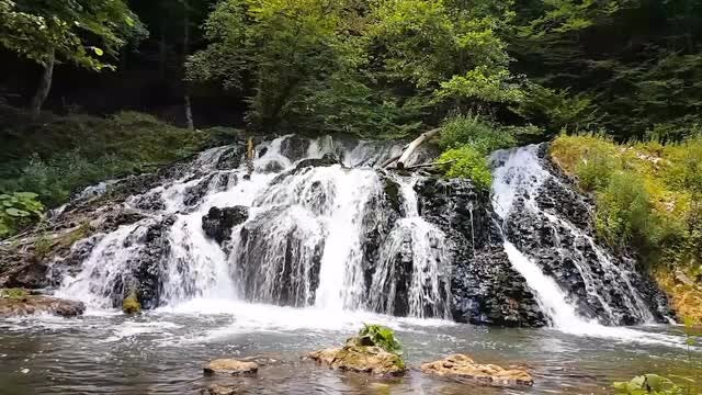 Big Waterfall In The Forest: Stock Video