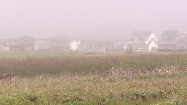 Residential Homes Covered By Mist: Stock Video