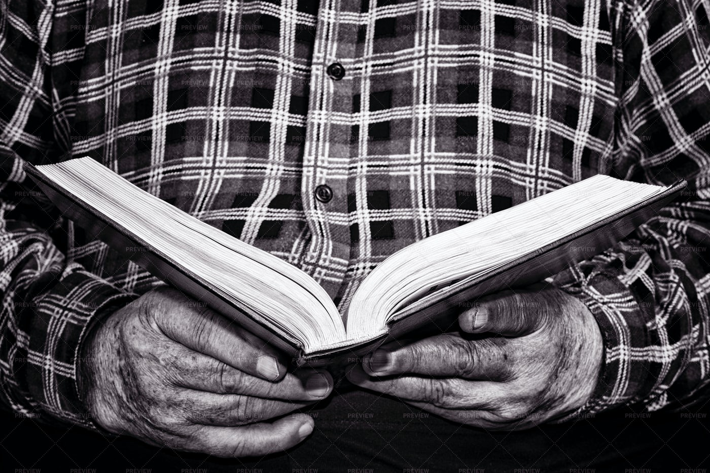 Elderly Man Reading: Stock Photos