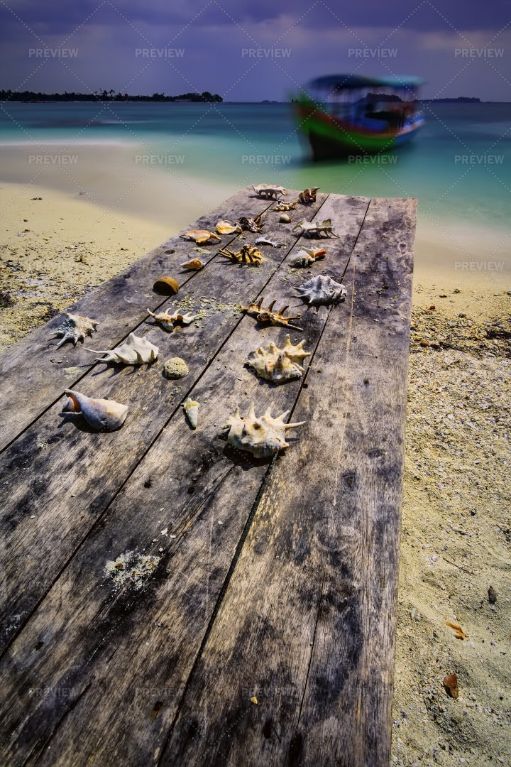 Old Table With Shells: Stock Photos