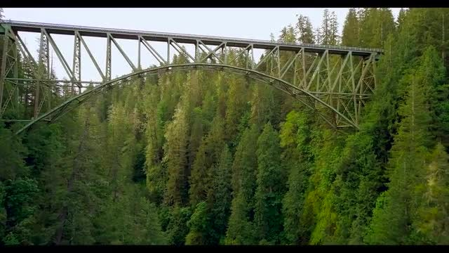 Flying Under Steel Bridge In The Forest: Stock Video