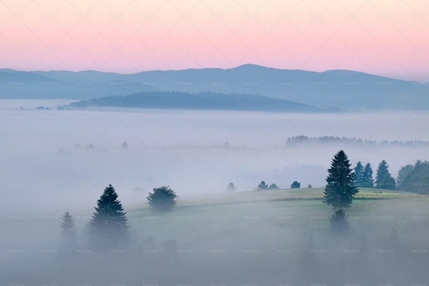 Foggy Landscape: Stock Photos