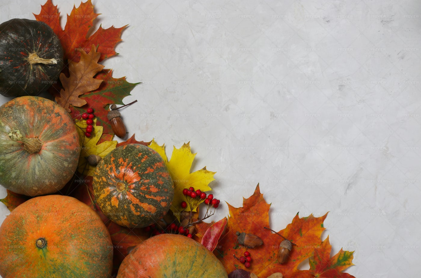 Banner With Bright Autumn Leaves: Stock Photos