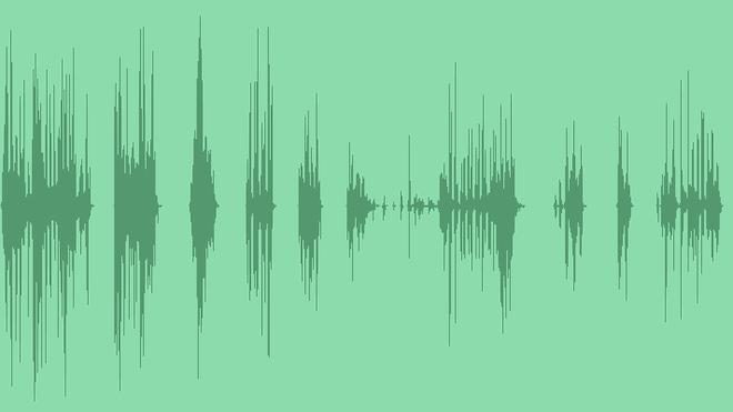 Bird: Sound Effects