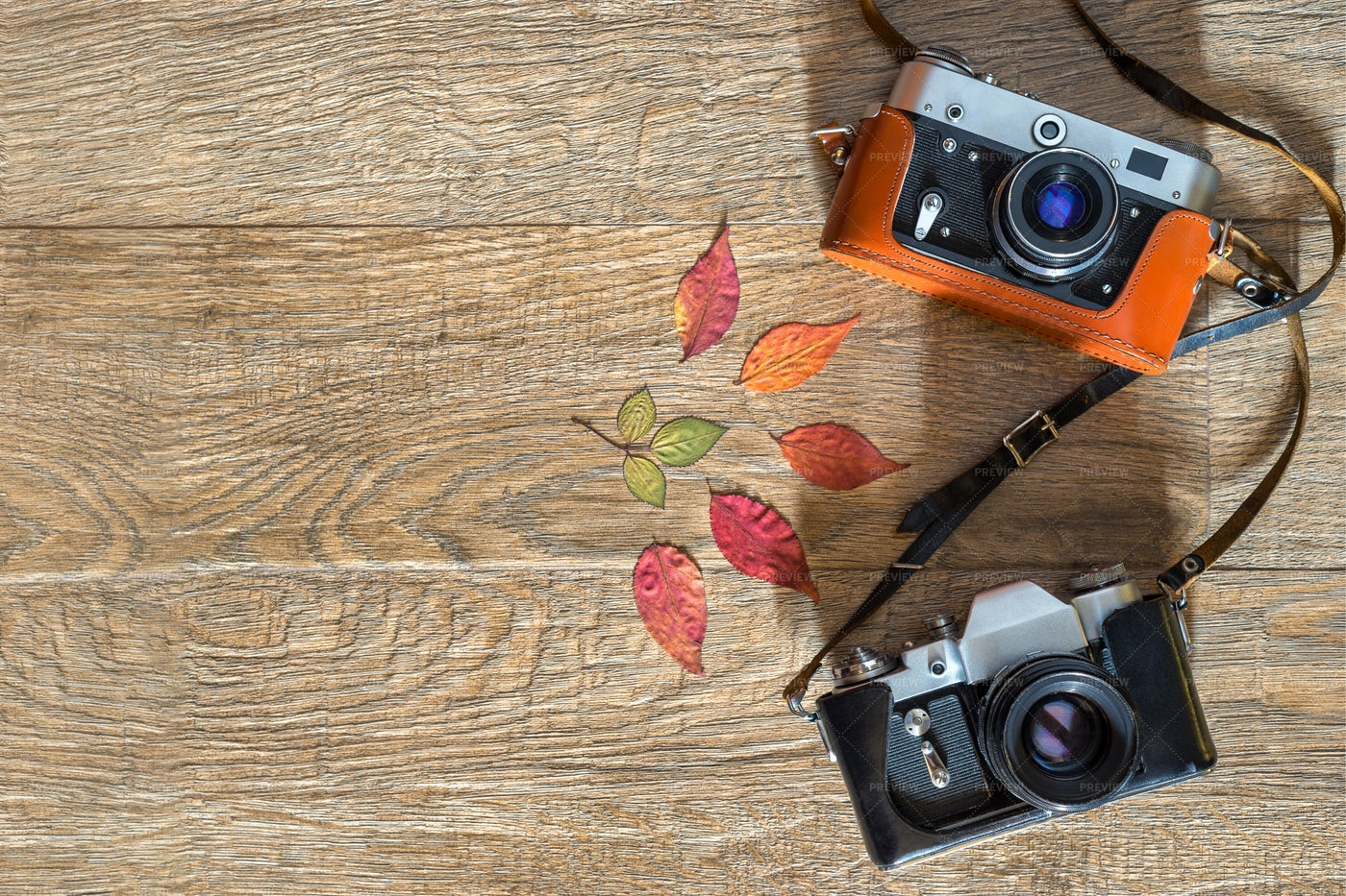 Old Retro Photo Cameras: Stock Photos