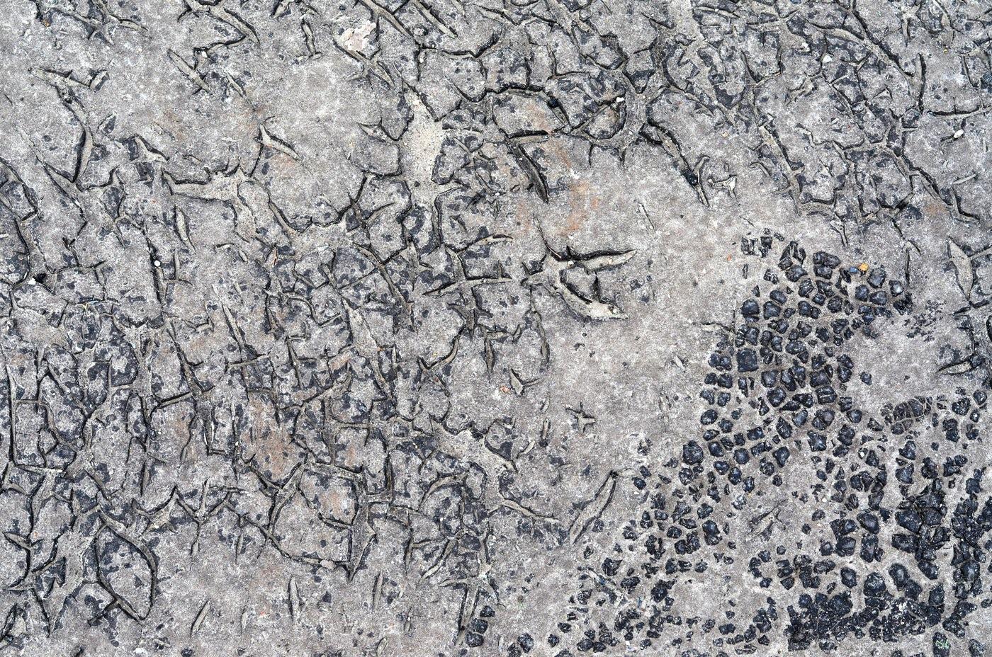 Cracks In Asphalt: Stock Photos
