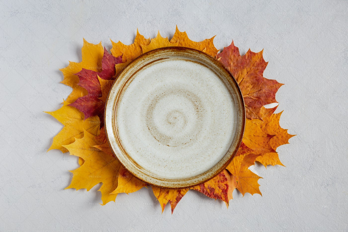 Empty Plate In Fall: Stock Photos