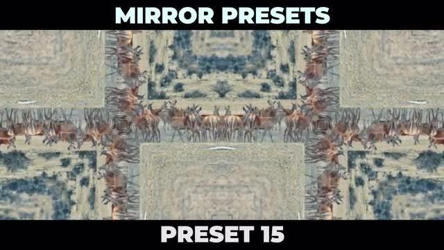 Mirror Presets: Premiere Pro Presets