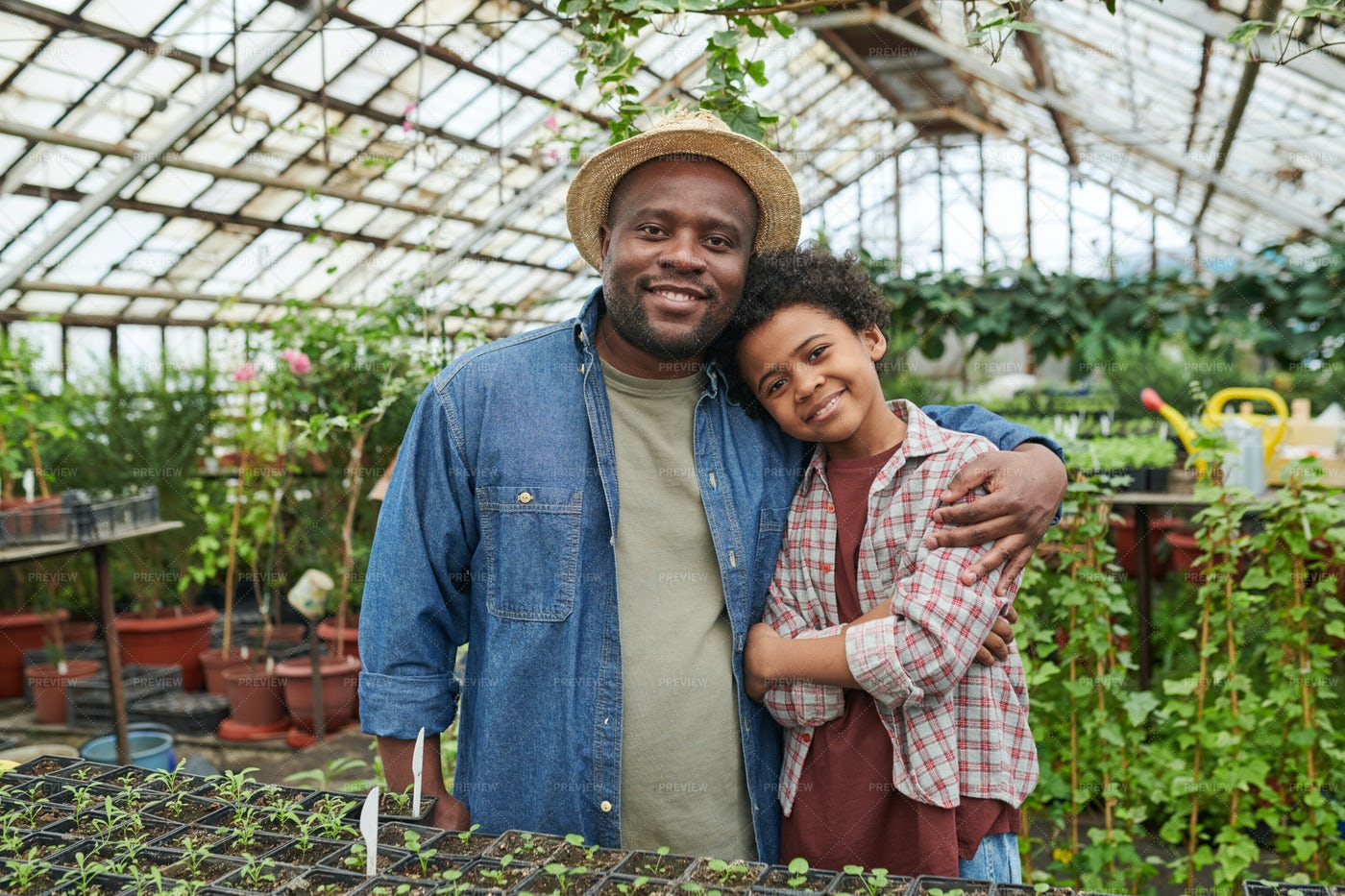 Father With Son In The Farm: Stock Photos