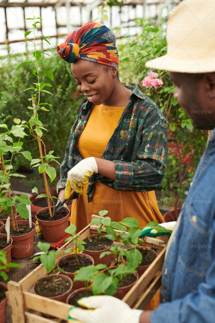Couple Working In The Garden: Stock Photos