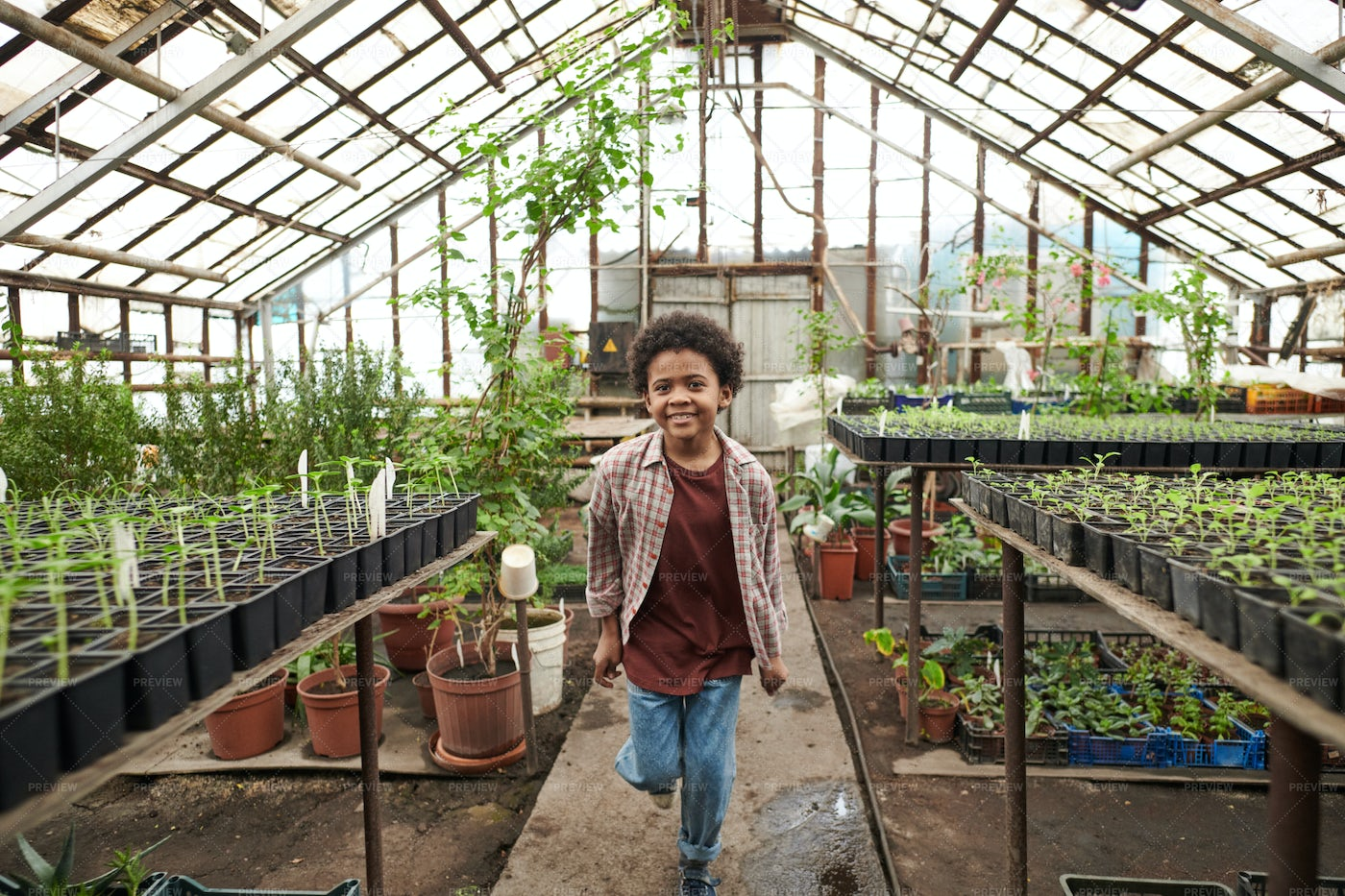 Kid Running In A Greenhouse: Stock Photos