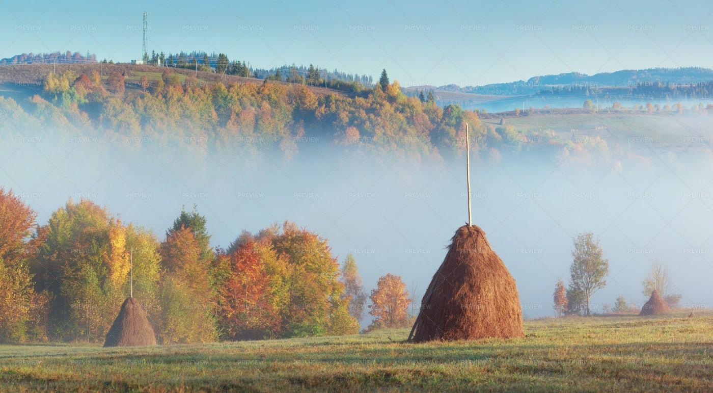 Countryside Morning Fog: Stock Photos