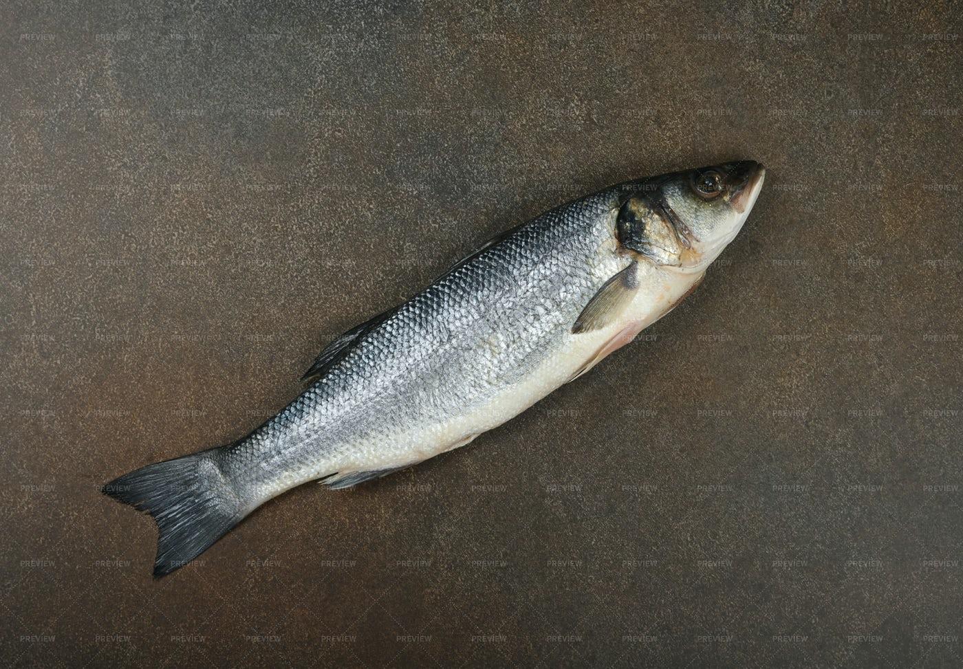 Raw Sea Bass Fish: Stock Photos