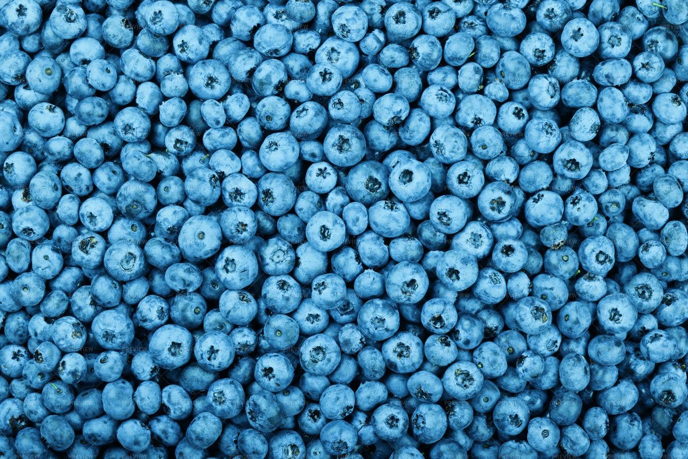 Fresh Blueberry Berries: Stock Photos