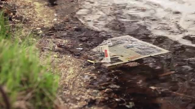 Newspaper In Dirty Water: Stock Video