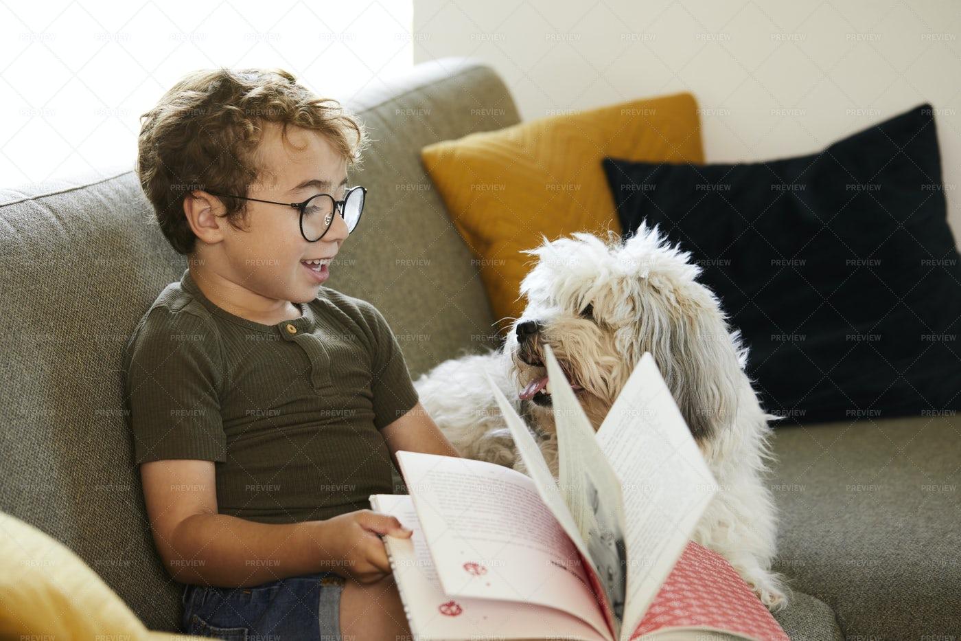 Kid And Dog: Stock Photos