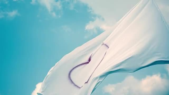 White Flag With Heart Symbol: Stock Video