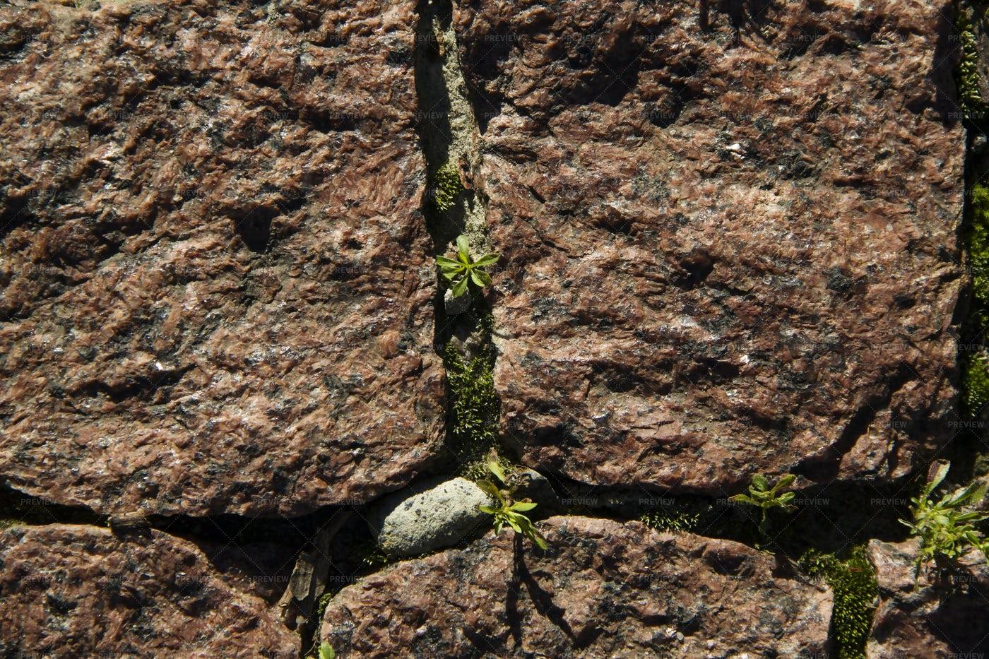 Granite Stone Texture: Stock Photos