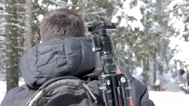 Tourists Walking In Snow-covered Mountains: Stock Video