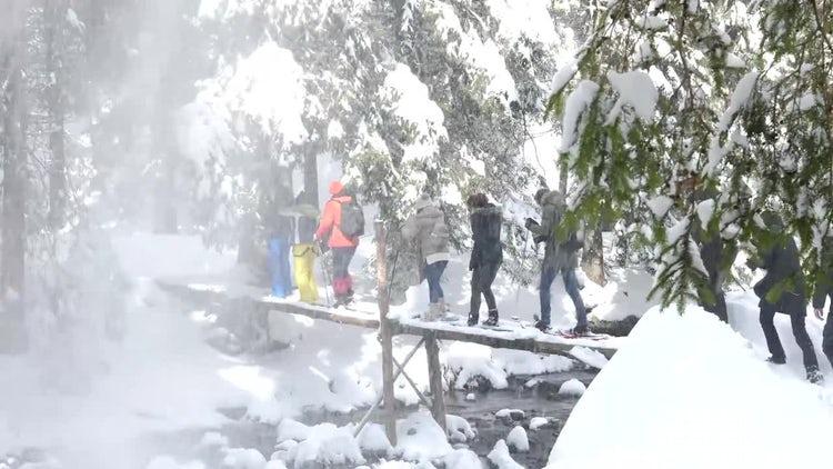 Hikers Crossing A Wooden Bridge: Stock Video