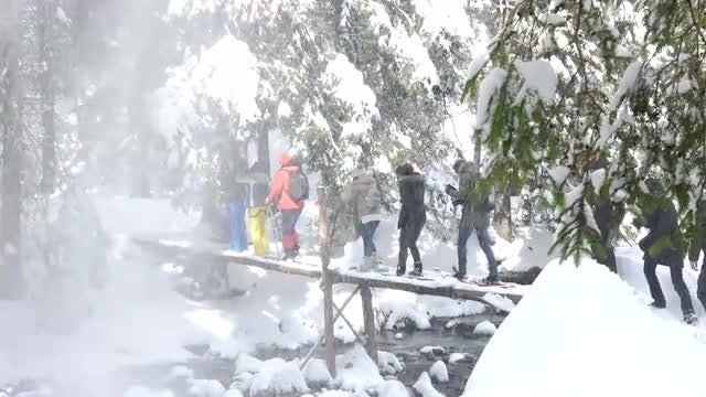 Hikers Crossing A Wooden Bridge: Stock Video